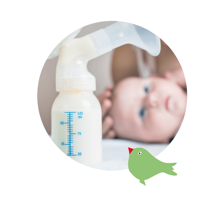 Apothekenspektrum Milchpumpen-Verleih